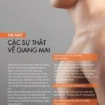 Giang-mai-page-001-211x300