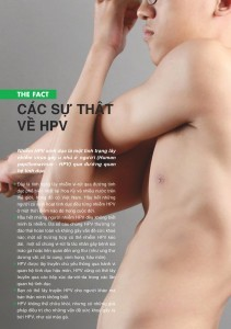 HBV-page-001-211x300